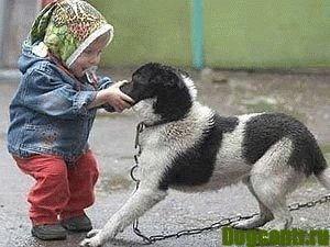 ребенок и собака