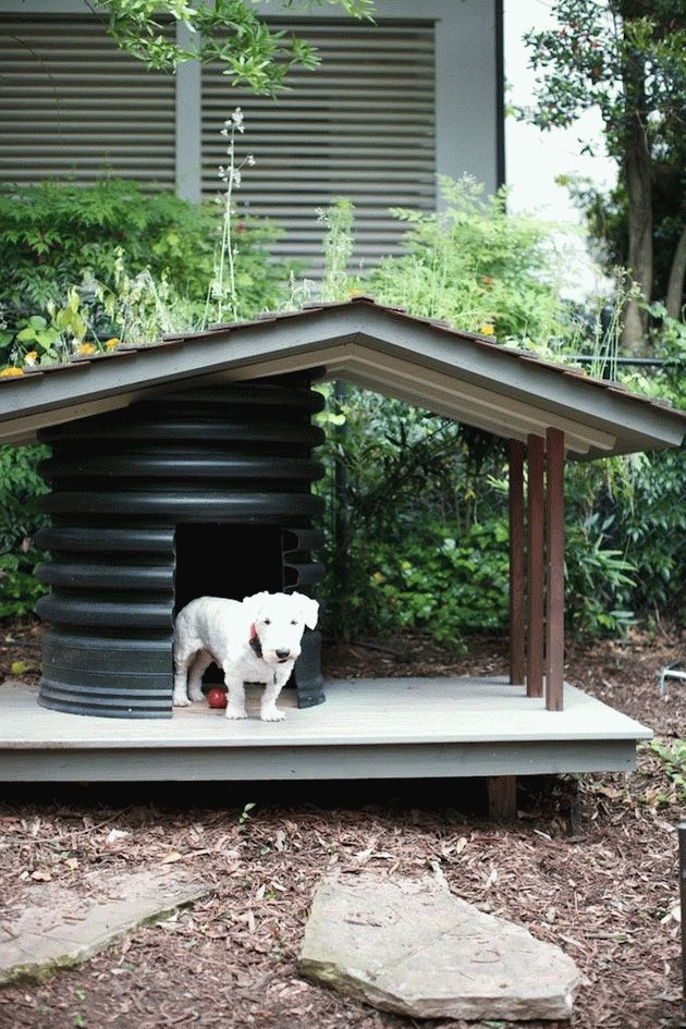 Простая будка для собаки своими руками