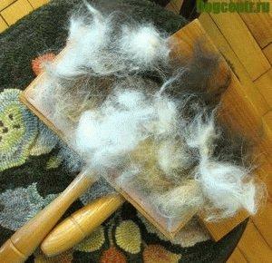 расческа для шерстисобаки