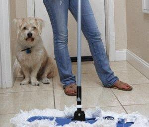 Уборка - собака нагадила дома