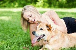 Отдых с собакой