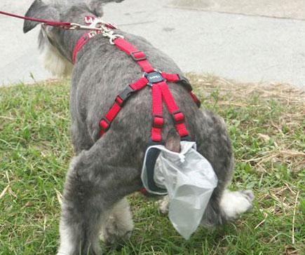 Удобства для собак и их нужды
